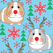 guinea-pig-reindeer-on-blue
