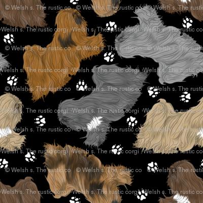 Trotting Lhasa Apso and paw prints - tiny black