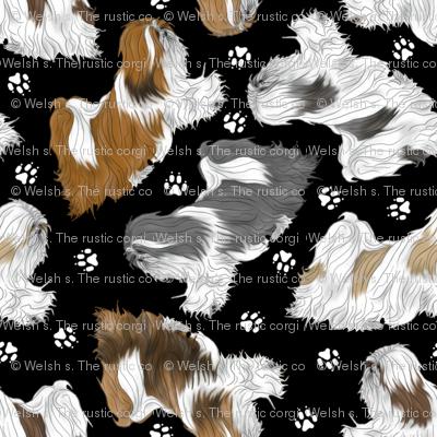 Trotting Lhasa Apso and paw prints B - tiny black