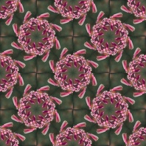 In The Pink Kaleidoscope