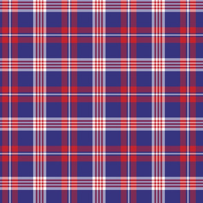 Blue and Red Plaid Pattern