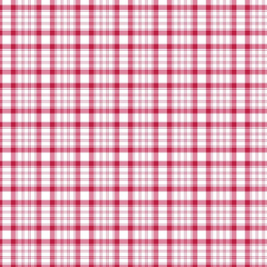 Raspberry Red and White Plaid