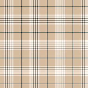 Beige and Navy Blue Plaid