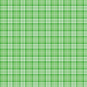 Bright Green and White Plaid