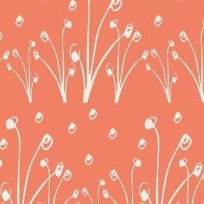 Homeland Flora Alliums in Tangerine