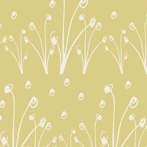 Homeland Flora Alliums in Mustard
