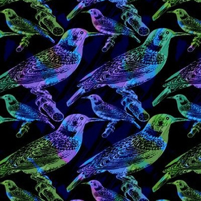 Iridescent Birds