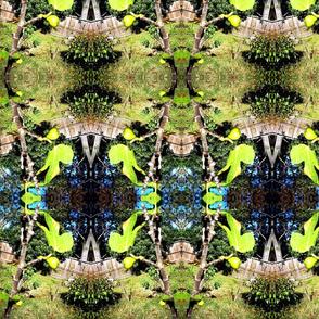 fig _ leaf  1-2014 053