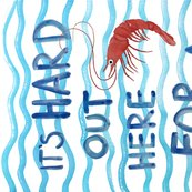 Rit_s_hard_out_here_for_a_shrimp__shop_thumb