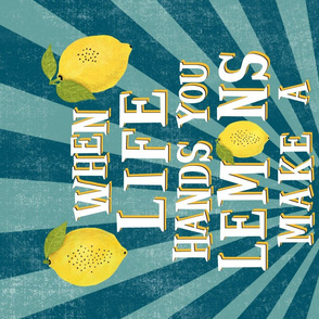 When Life Hands You Lemons, Make a Gin and Tonic, Funny Bar Tea Towel, Retro Tea Towel
