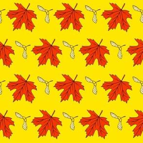 Acer pattertn1