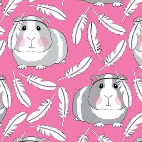 guinea-pigs-with-feathers-on-bright-pink