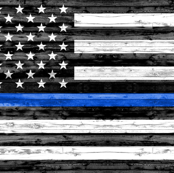 "(30""x18"") thin blue line panel - police"