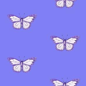 F-butterflyblues