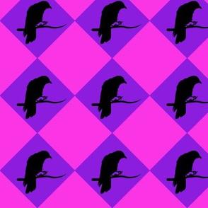 Harlequin Crow (Pink)