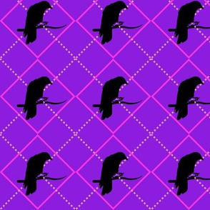 Argyle Crow (Pink)