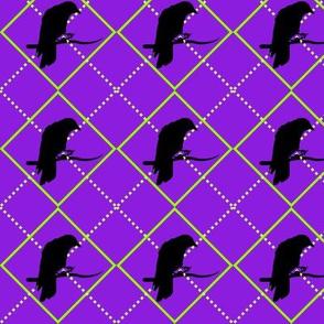 Argyle Crow (Green)