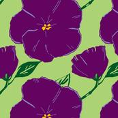 big violets retro verde