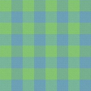 Checks in Lime and Blues