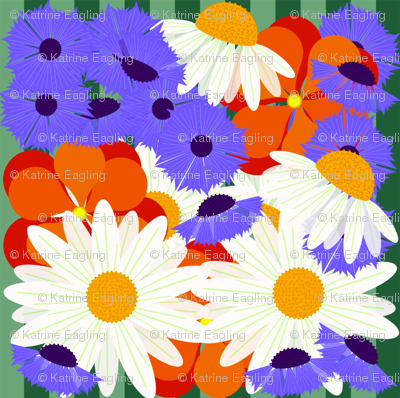 daisys and buttons