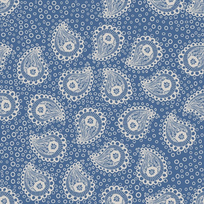 Gray Paisley Bubbles on French Blue