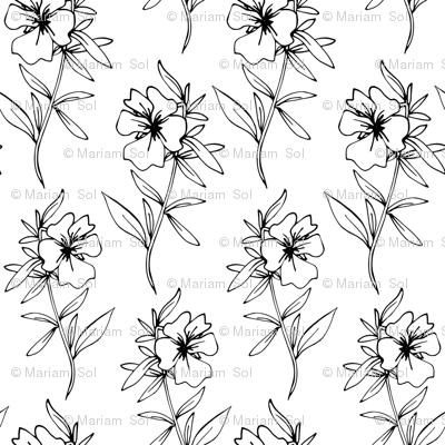 Dahlias Black And White