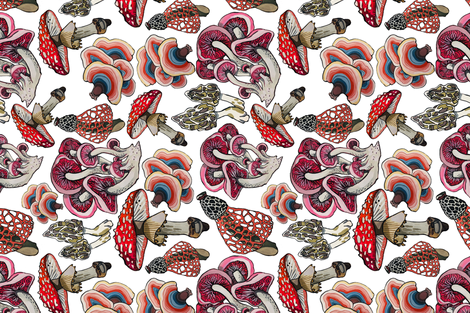 We are the champignons... fabric by ariellelouise on Spoonflower - custom fabric