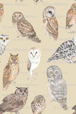 Owls on beige