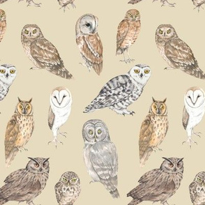 Owls on beige