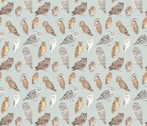 Owls of the world on blue fabric by daniwilliams on Spoonflower - custom fabric