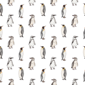 Penguin pattern on white