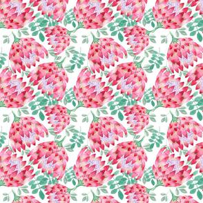 Watercolor protea