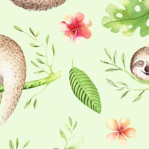 sloths 2-2