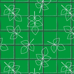 Rose leaves on green windowpane