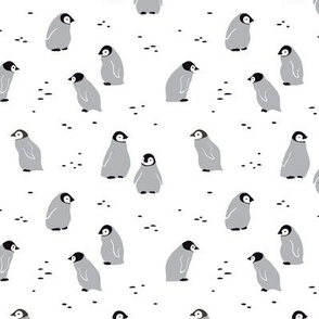 Emperor penguin chicks, small