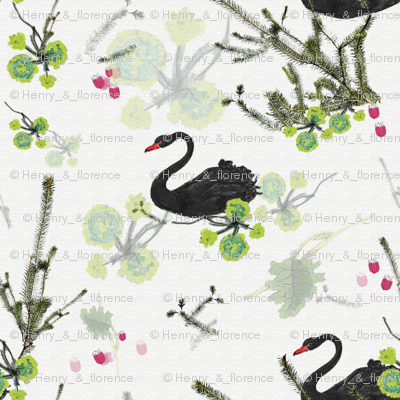 Black Swan with flora and fauna