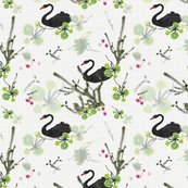 Rrblack_swan_with_river_flora_shop_thumb