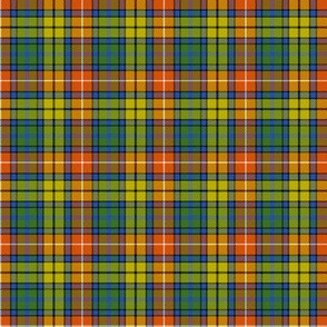 "Buchanan Ancient tartan - 2"" warm modern colors"