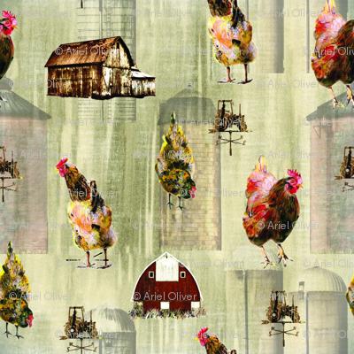 chickens-01