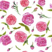 Rrroses-watercolor_shop_thumb