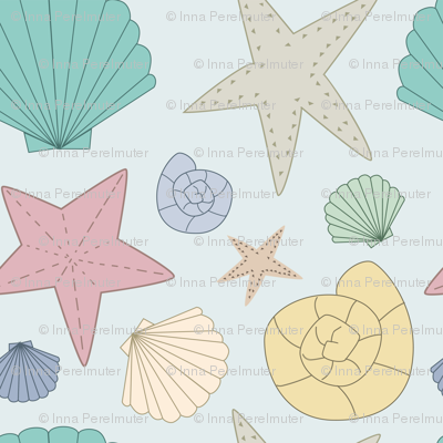 Colorful seashells on teal