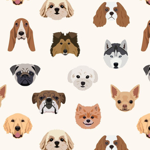 Many Dogs - White Background