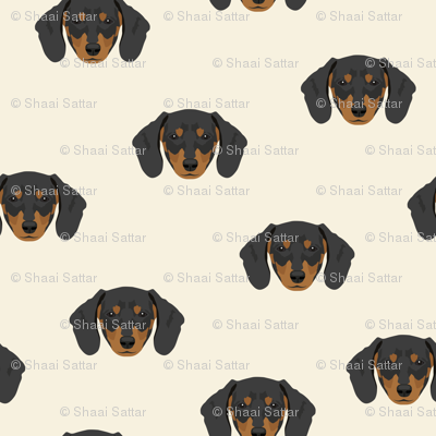 Dachshund Dog Seamless Pattern - White Background