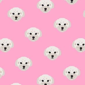 Maltese Dog Pattern - Pink Background