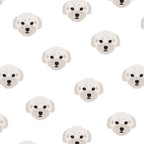 Maltese Dog Pattern - White Background