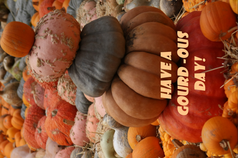 Gourdous Day fabric by sewingscientist on Spoonflower - custom fabric