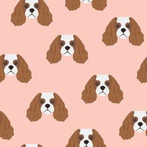 Cavalier King Dog Face Pattern - Pink Background
