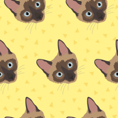 Siamese Cat Faces Against Yellow