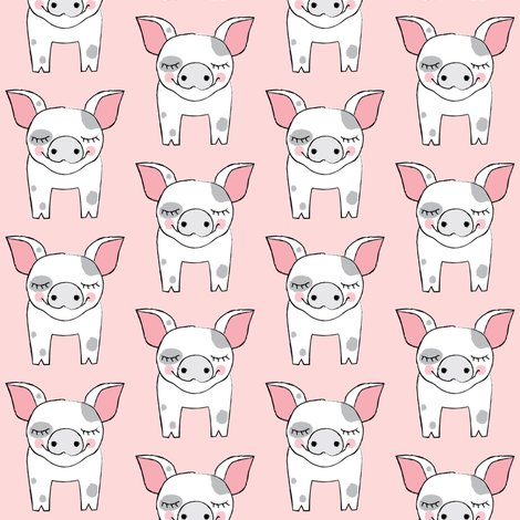 Rspotted-pig-single-on-pink_shop_preview