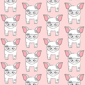 spotted pigs on pink